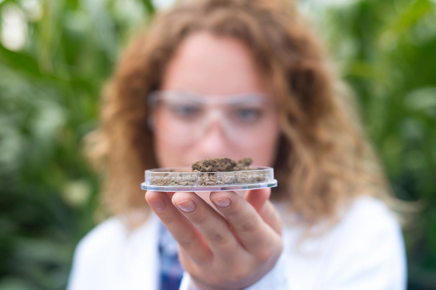 Virginia offering nutrient management training
